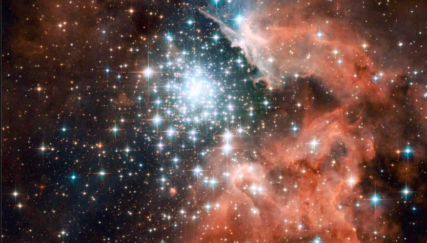 le stelle